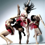 An exclusive behind the scenes tour for 4 with Stephen Petronio Dance Company. Witness the artistic process of one of New York's most renowned choreographers. by Stephen Petronio Dance Company